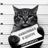 Joni_27_Rus
