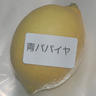 shimonkin